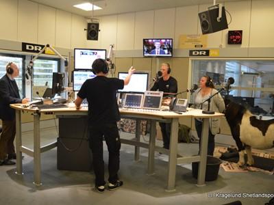 Ll. Kragelunds Elfie i live radio